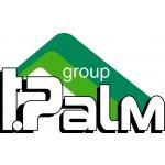 T.Palm